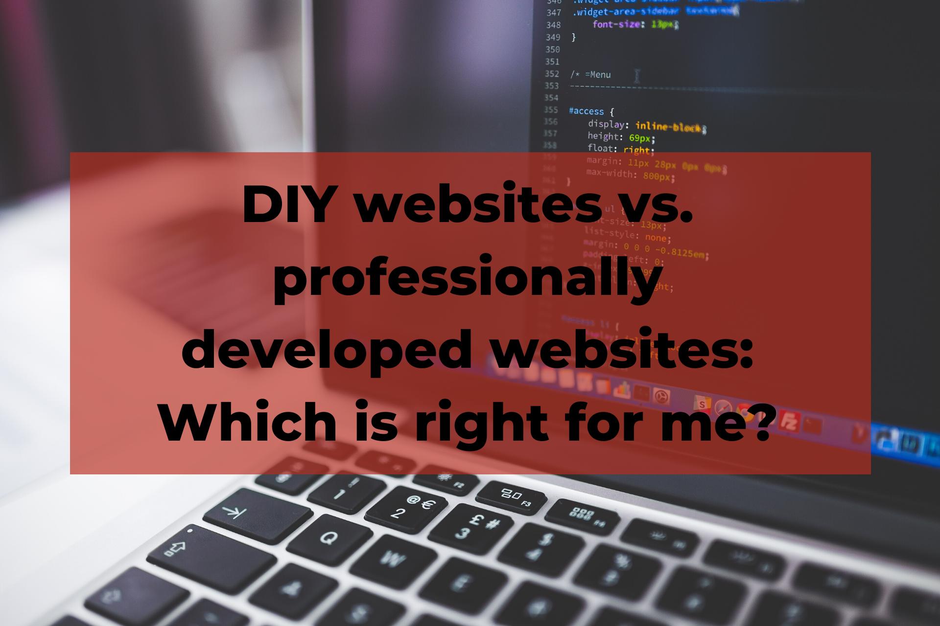 DIY websites vs professionally developed
