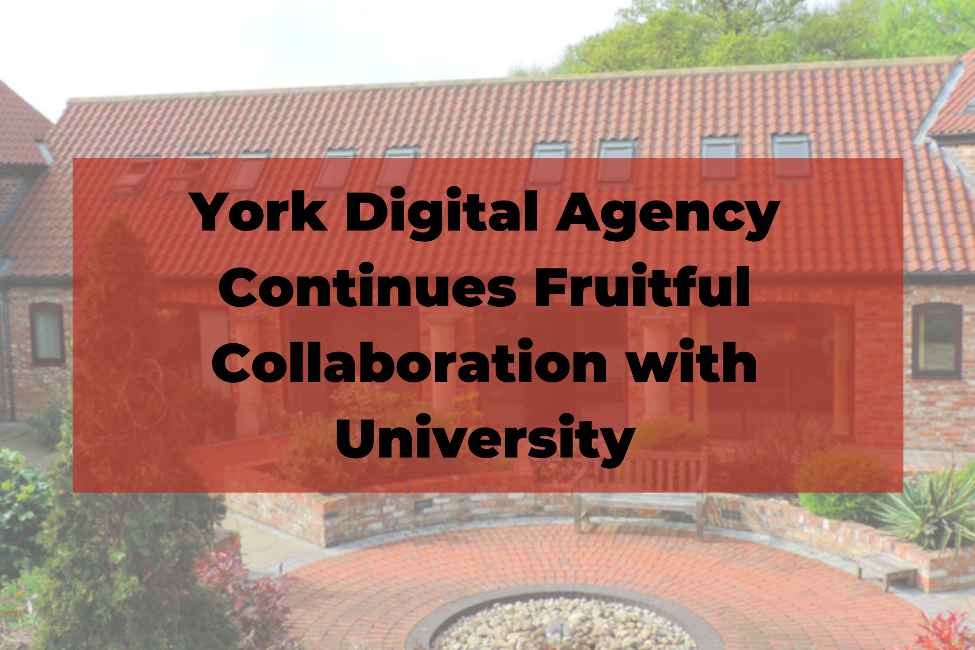 York Digital Agency Continues Fruitful Collaboration with University